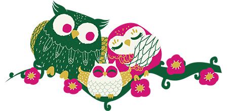 stickers hiboux fushia et émeraude - stickersmalin